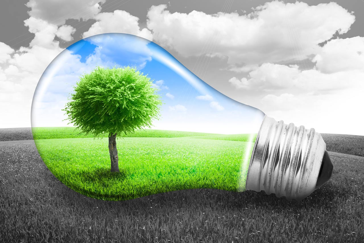 See How LED Lighting can Help the Environment